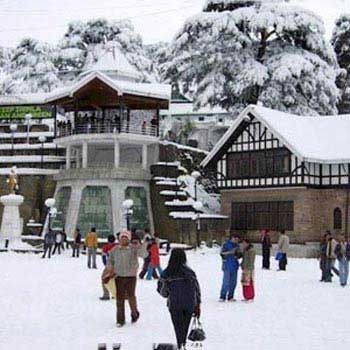 Exotic Shimla Volvo Package