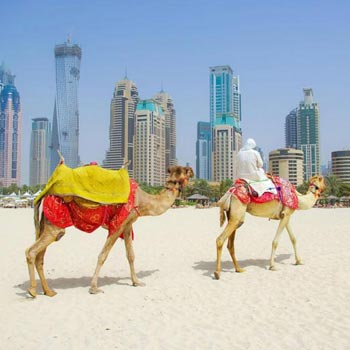 Sparkling Dubai Package