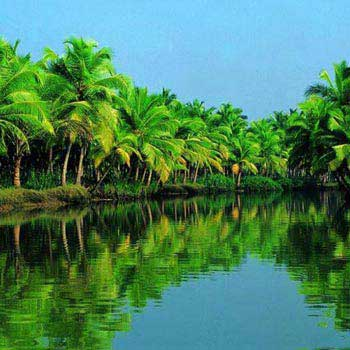 Splendors of Kerala Package