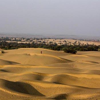 Desert Circuit Tour