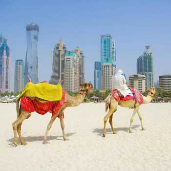 Exotic Dubai Trip Package