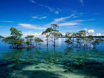 Port Blair - Havelock 5 Days Tour