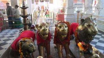 Devi Darshan Tour 8 Days