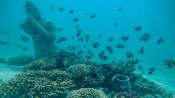 Catamaran to Ile aux Cerfs: Undersea walk, Parasailing, Tube Riding, Lunch, GRSE Tour