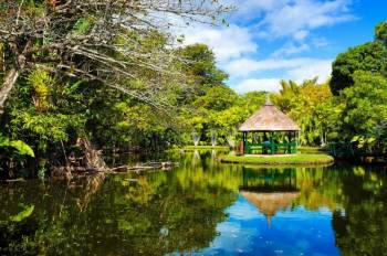 Discovering the North of Mauritius