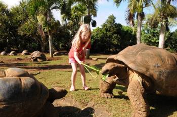 Southern Tales Tour: Full Day Tour Including Crocodile Park & Seven Coloured Earth