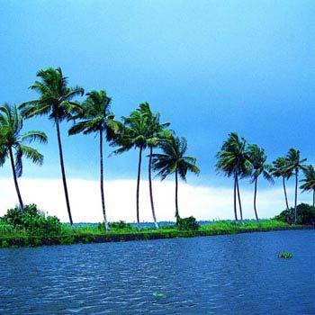 Athirappilly - Cherai Beach - Kumarakam - Alleppey Houseboat Tour