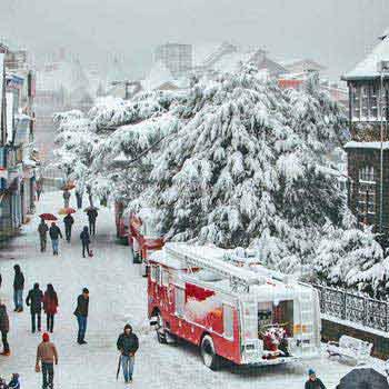 Delhi Shimla Volvo Package