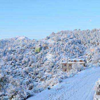 Romantic Shimla Kullu Manali Honeymoon Package Tour