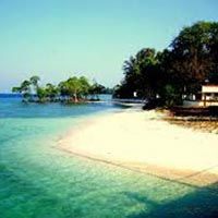 Andaman Family Trips Tour