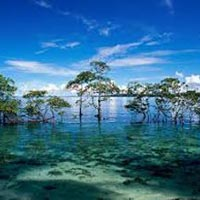 Port Blair With Havelock Trip Tour