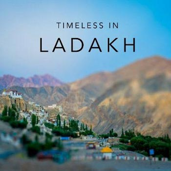 New Light Of Ladakh Honeymoon Package