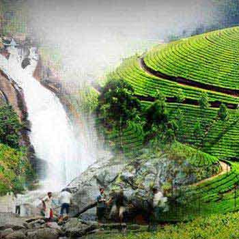 Kerala 7 Days Tour