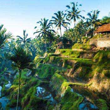 Bali with Thailand Tour