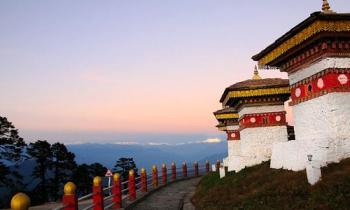Hasimara - Thimphu - Paro Tour
