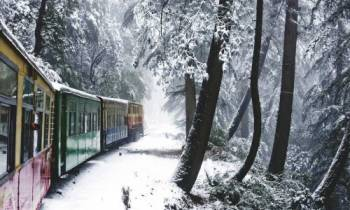 Shimla, Manali & Chandigarh Tour