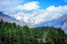 Family Manali Package