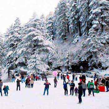 Shimla Manali By Car Ex. Chandigarh Tour