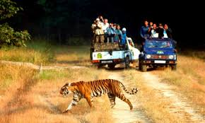 Weekend Getaway to Corbett Tour