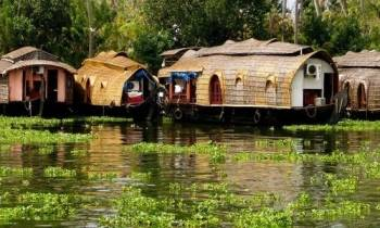 Hills and Backwaters of Kerala Tour