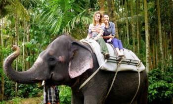 Kerala Gateway Tour