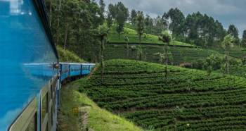 Srilanka At Ease With Culture , Hill County & Beach - 1 Tour