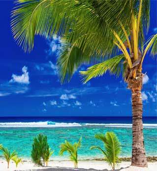 Fun Island Resort Tour