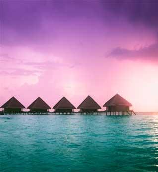 Sun Island Resort and Spa - 5 Star Tour