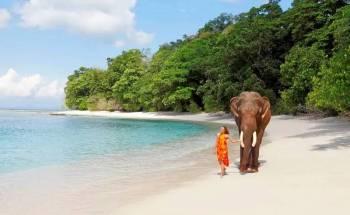 Port Blair Havelock Neil Baratang Island 7 Nights 8 Days Tour