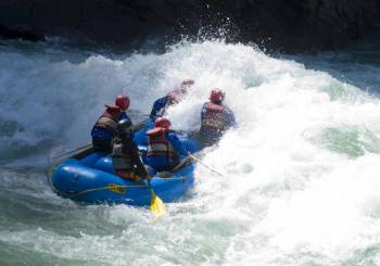 Day Rafting on the Ganges: Kodiyala-Laxman Jhula Tour