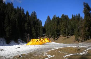 Trek to Chopta with Chandrashila Tour