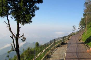 4N5D BANGALORE-MYSORE-OOTY-KODAIKANAL-BANGALORE SOUTH INDIA TOUR PROGRAM