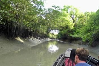 Sundarban World Heritage Tour