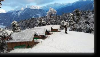 1 Night 2 Days Chopta Camping