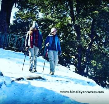 1 Night 2 Days Mussoorie (cloud End) Camping