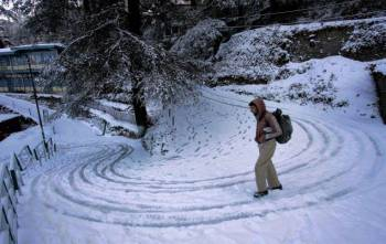 Manali with Shimla Tour 6 Days