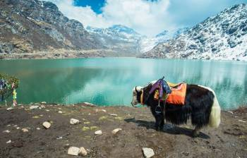 Gangtok Tour 3 Night/ 4 Days