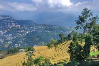 03 Nights 04 Days Gangtok Tour