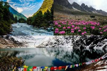 7 Nights 8 Days Gangtok - Lachung - Darjeeling Tour