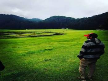 Majestic Himachal Shimla,Manali,Dharamshala,Dalhousie Tour