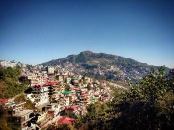 Shimla Passionate Honeymoon By Volvo Bus Tour