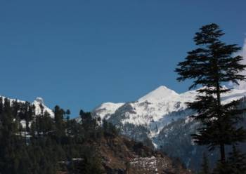 Manali Taxi Tour from Delhi Tour