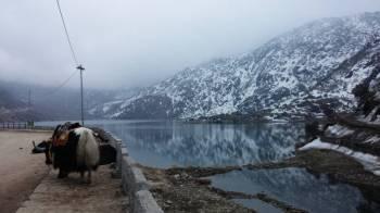 3 Nights 4 Days Gangtok with Tsomgo Changu Lake Tour