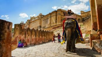 Jodhpur City Tour with Village Safari