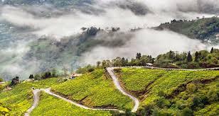 Exploring Darjeeling Tour 4 Days