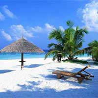 Exotic Goa Tour
