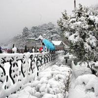 Magical Shimla Tour