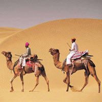 Rajasthan Where History Meets Nature Package