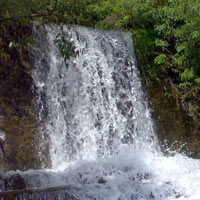 Kumaon Darshan Tour