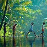 Beautiful of Kerala Tour